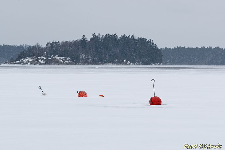 Vinter vid Bergsjödalsviken