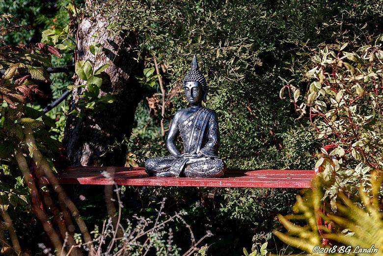 Buddha i trädgården