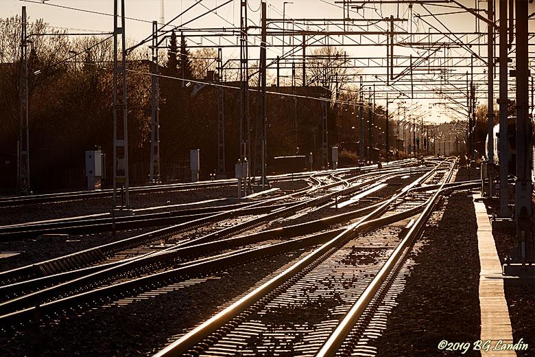 Järnvägsspår i motljus