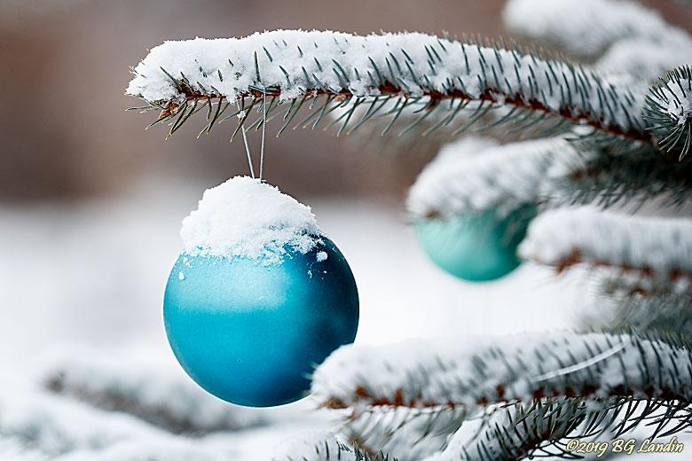 Julstämning i januari