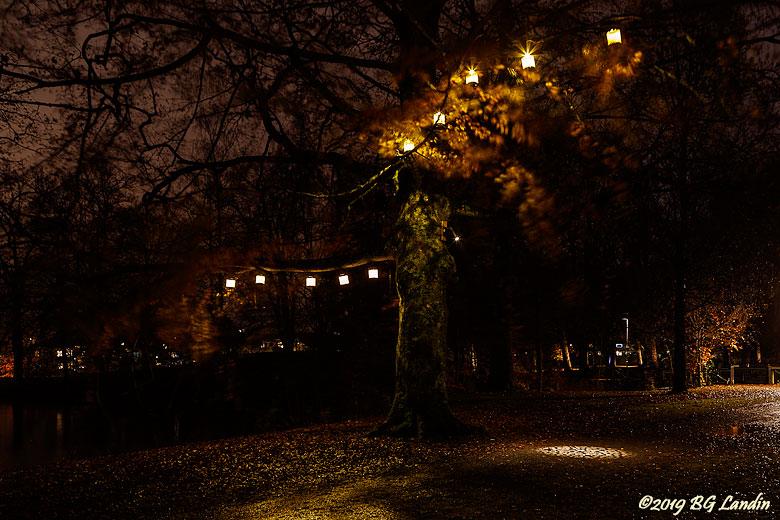 Ljuspromenad