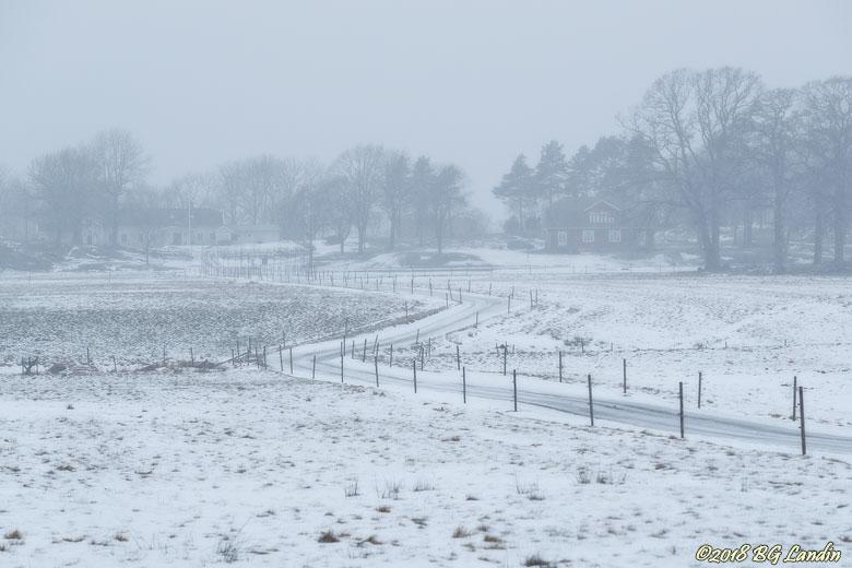 Slingrande vinterväg