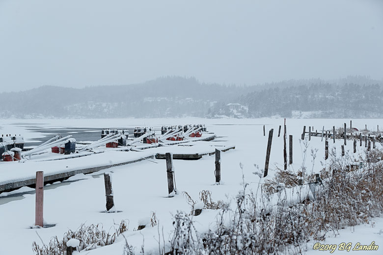 En vinterdag vid Säveåns utlopp