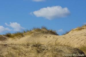 Sanddyner på Tylösand 070406
