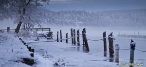 Vinterhamn - 110113