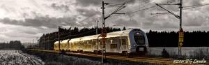 Golden train