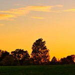 Solnedgång i smålandshage