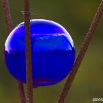 Blå glaskula