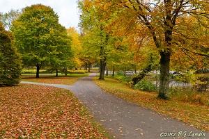 Höst i Nolhaga park