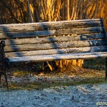 Viloplats i vintertid