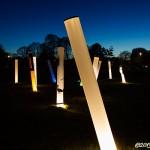Ljuspelare på Savannen