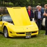 Kanariegul Corvette