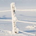 Inbäddat i snö och frost