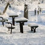 Vinter vid rastplatsen