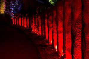 Bilder från Lights in Alingsås 2016